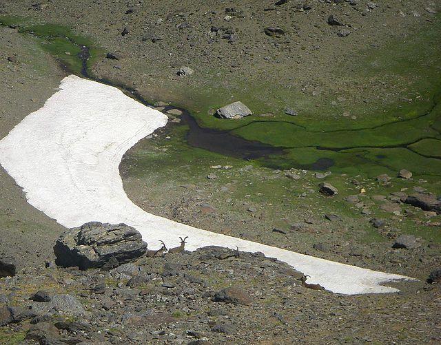 Cerro del Caballo por los Tajos de la Virgen-Verea Cortá y Cuerda Tajos Altos (Sierra Nevada)